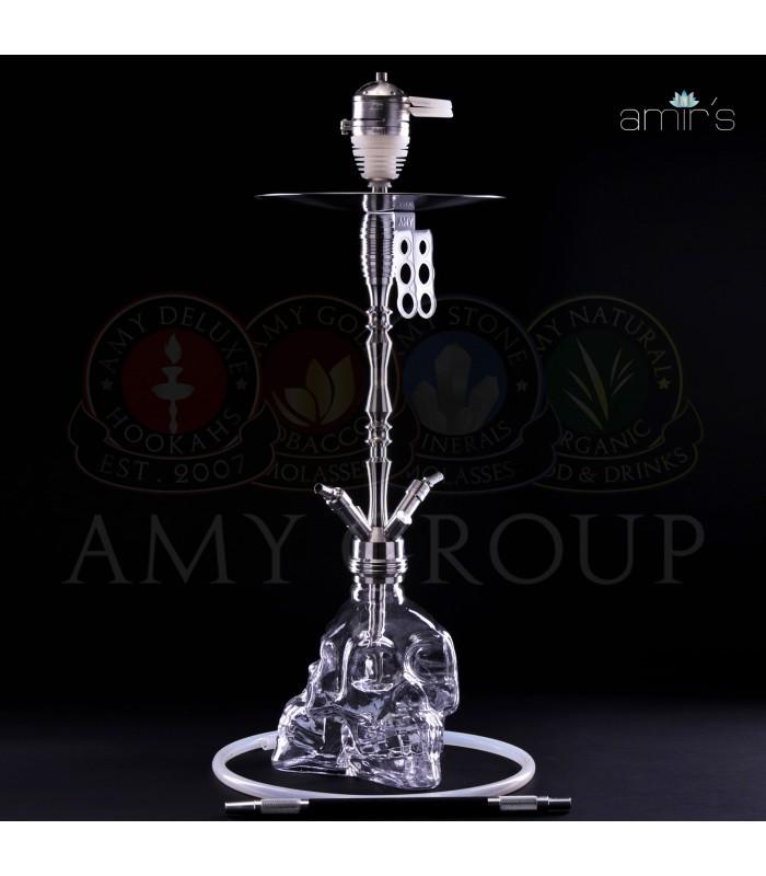 Amir's 302 Clear Skull 3D